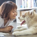 Pet owners: Keeping a clean home with furry friends