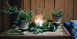 Loving Aromatherapy   Essential Oils Tips