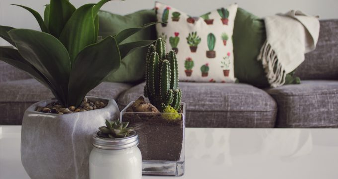 11 Ways to Liven Up Your Space